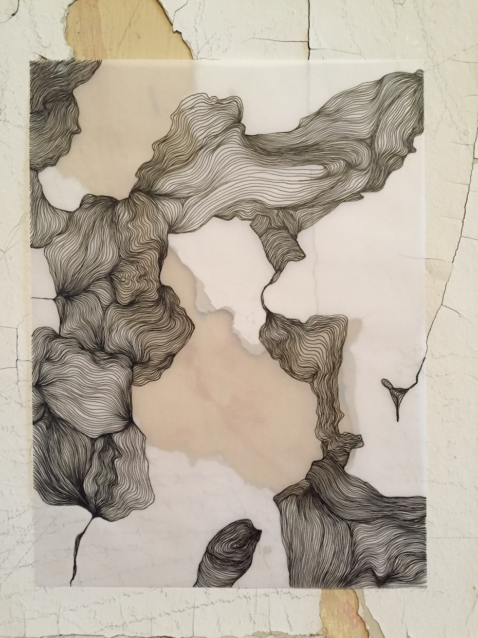 Deanna_Lee--Drawing_from_House_5B_Inspection_Scrolls-A.JPG